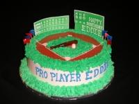 Baseball Birthday Cake on Baseball Stadium